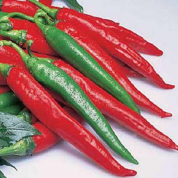 Cayenne rood