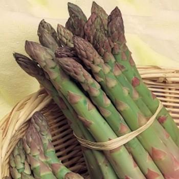 Asparagus Precoce de Argentuil