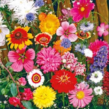 Cut flowers mix