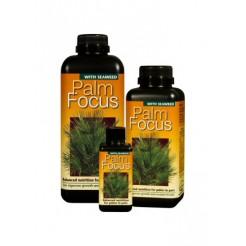 Palmvoeding-Palm focus 1 liter