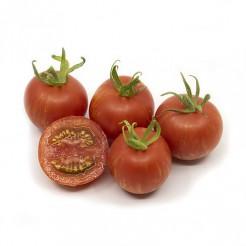 Tomato Red & Gold Stripes