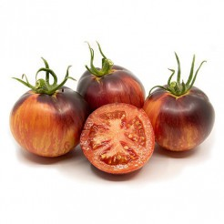 Tomato Bandol Blues