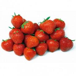 Strawberry Grandian F1