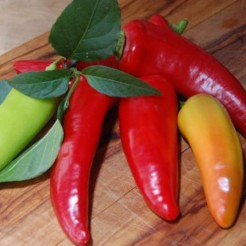 Pointy sweet pepper Hungarian Sweet Wax