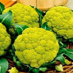 Cauliflower Verde di Macerata